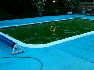 Scottsdale Green Pool Winter